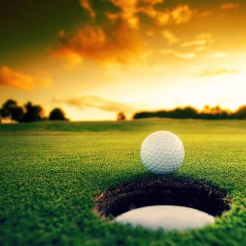 Golf and Turf